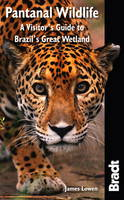 Pantanal Wildlife: A Visitor's Guide...