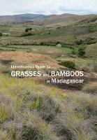 Identification Guide to Grasses and...