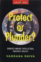 Protect or Plunder?: Understanding...