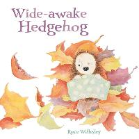Wide-awake Hedgehog