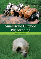 Small-Scale Outdoor Pig Breeding