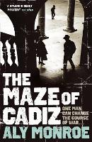 Maze of Cadiz: A Peter Cotton Book