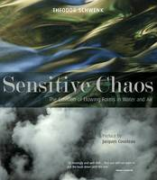 Sensitive Chaos: The Creation of...