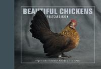 Beautiful Chickens Postcard Book: 30...