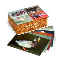Beautiful Farmyard Postcards 100 Pack