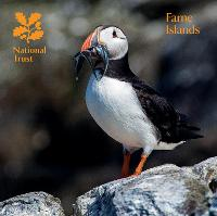 Farne Islands, Northumberland:...