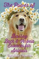 The Power of Bailey, Bach & Verbeia...