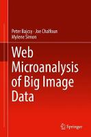 Web Microanalysis of Big Image Data