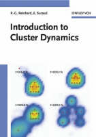 An Introduction to Cluster Dynamics