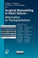Surgical Remodelling in Heart ...