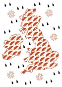 British Weather Note Card