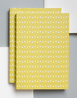 Leaf Green Dash Print Notebook