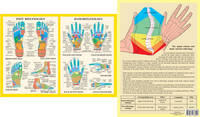 Hand and Foot Reflexology