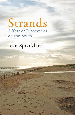 Strands: A Year of Discoveries on the Beach