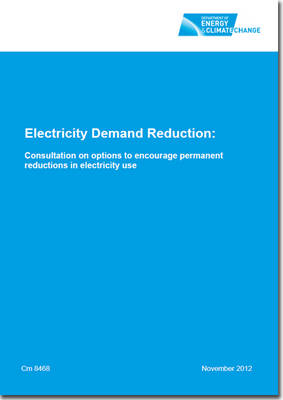 Electricity Demand Reduction: Consultation on Options to Encourage Permanent Reductions in Electricity Use