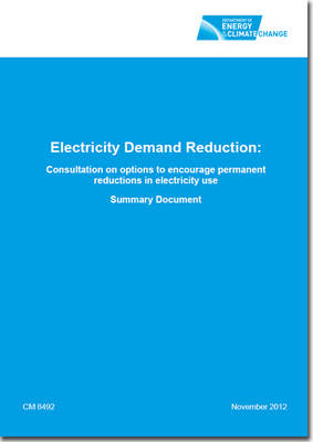 Electricity demand reduction: consultation on options to encourage permanent reductions in electricity use, summary document