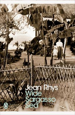 wide sargasso sea essays Free essay: comparing wide sargasso sea by jean rhys and jane eyre by charlotte bronte in the novels wide sargasso sea by jean rhys and jane eyre by.