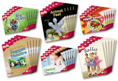 Oxford Reading Tree: Stage 4: More Fireflies A: Class Pack (36 Books, 6 of Each Title)