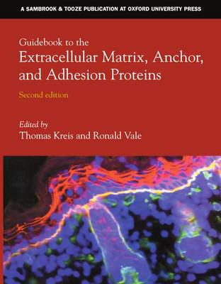 Guidebook to the Extracellular Matrix, Anchor and Adhesion Proteins