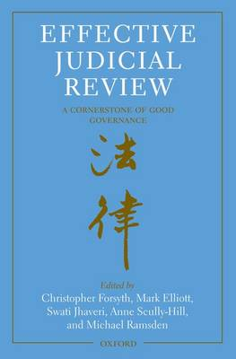 Effective Judicial Review: A Cornerstone of Good Governance