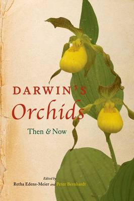 Dawwin's Orchids: Then and Now
