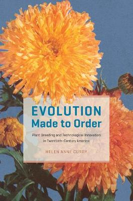 Evolution Made to Order: Plant Breeding and Technological Innovation in Twentieth Century America