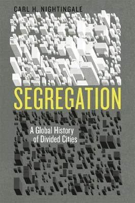 Segregation: A Global History of Divided Cities