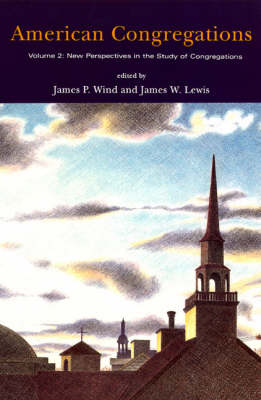 American Congregations: v. 2: New Perspectives in the Study of Congregations