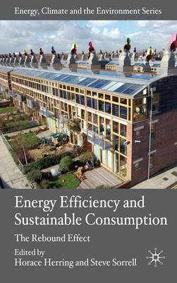Energy Efficiency and Sustainable Consumption: The Rebound Effect