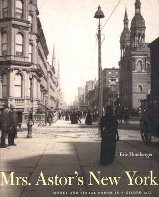 Mrs. Astor's New York: Money and Social Power in a Gilded Age
