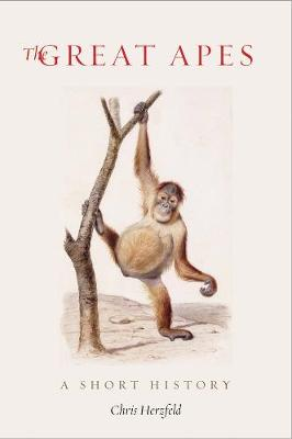 The Great Apes: A Short History