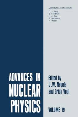 Advances in Nuclear Physics: 19