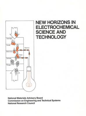 New Horizons in Electrochemical Science and Technology