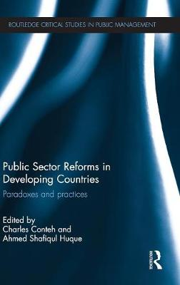 Public Sector Reforms in Developing Countries: Paradoxes and Practices
