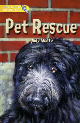 Literacy World Satellites Fiction Stage 1 Guided Reading Cards: Pet Rescue Framework 6 Pack