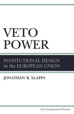 Veto Power: Institutional Design in the European Union