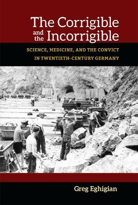The Corrigible and the Incorrigible: Science, Medicine, and the Convict in Twentieth-Century Germany