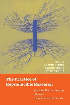 The Practice of Reproducible Research: Case Studies and Lessons from the Data-Intensive Sciences