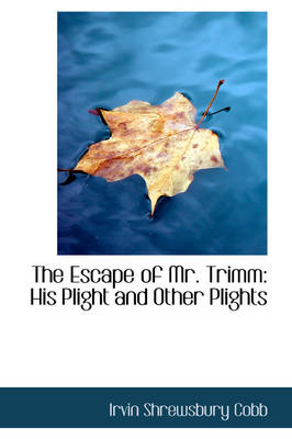 The Escape of Mr. Trimm: His Plight and Other Plights