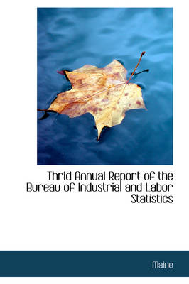 Thrid Annual Report of the Bureau of Industrial and Labor Statistics