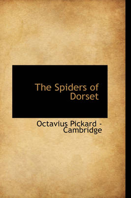 The Spiders of Dorset