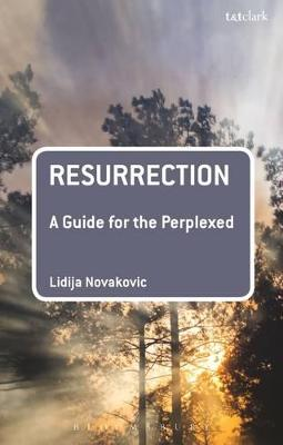 Resurrection: A Guide for the Perplexed