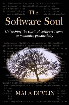 The Software Soul