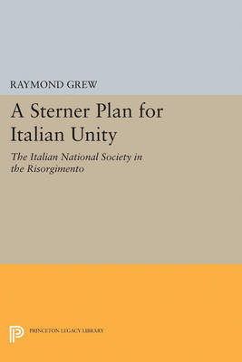 A Sterner Plan for Italian Unity