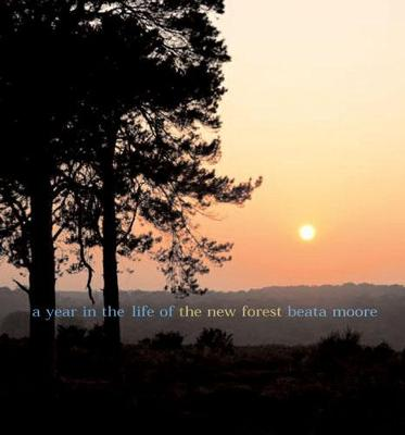 A A Year in the Life of the New Forest