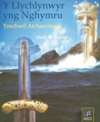 Vikings in Wales: An Archaeological Quest