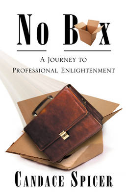 No Box: A Journey to Professional Enlightenment