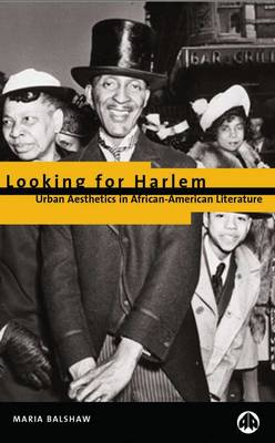 Looking for Harlem: Urban Aesthetics in African-American Literature