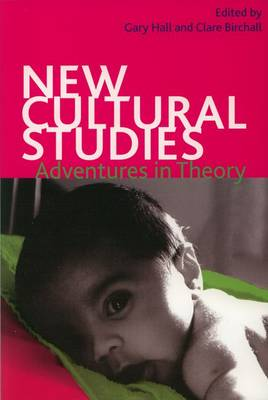 New Cultural Studies: Adventures in Theory