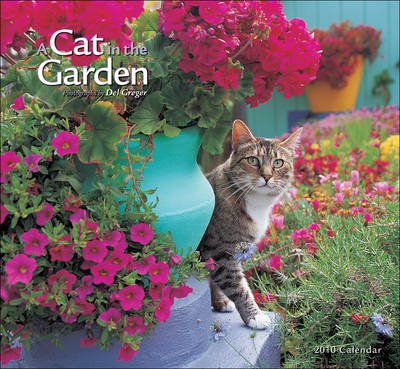 A Cat in the Garden